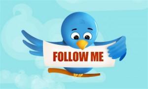 twitter-bird-pic