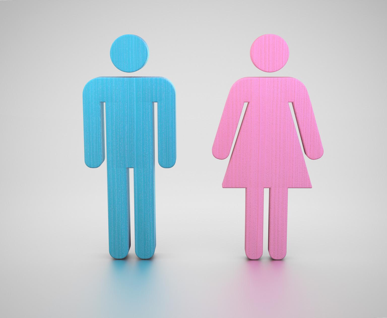 gender options on facebook essay