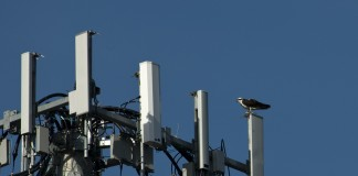 Google, Microsoft, Comcast and other large tech companies are lobbying the Federal Communications Commission against a new LTE technology Verizon is developing, claiming it will have an adverse effect on Wi-Fi. Image Credit: Gigaom