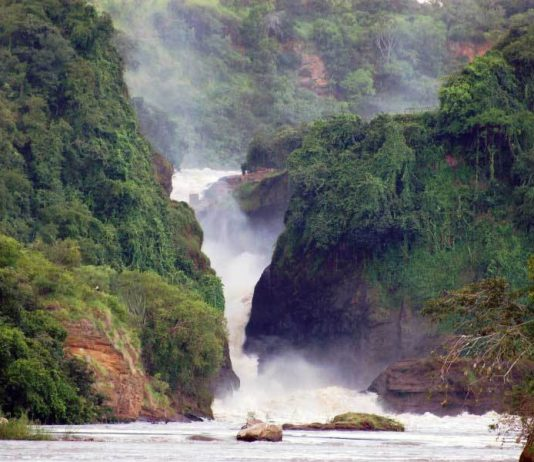 Murchison Falls National Park. (Photo Courtesy: Primate World Safaris)