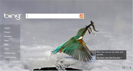 Bing's Welcome Screen is photographic