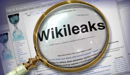Wikileaks Petition