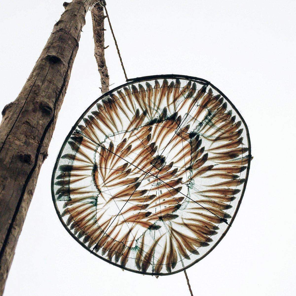 taken by Xu Lin is of drying fish