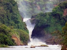 Murchison Falls National Park. (Photo Courtesy: Primate World Safaris)