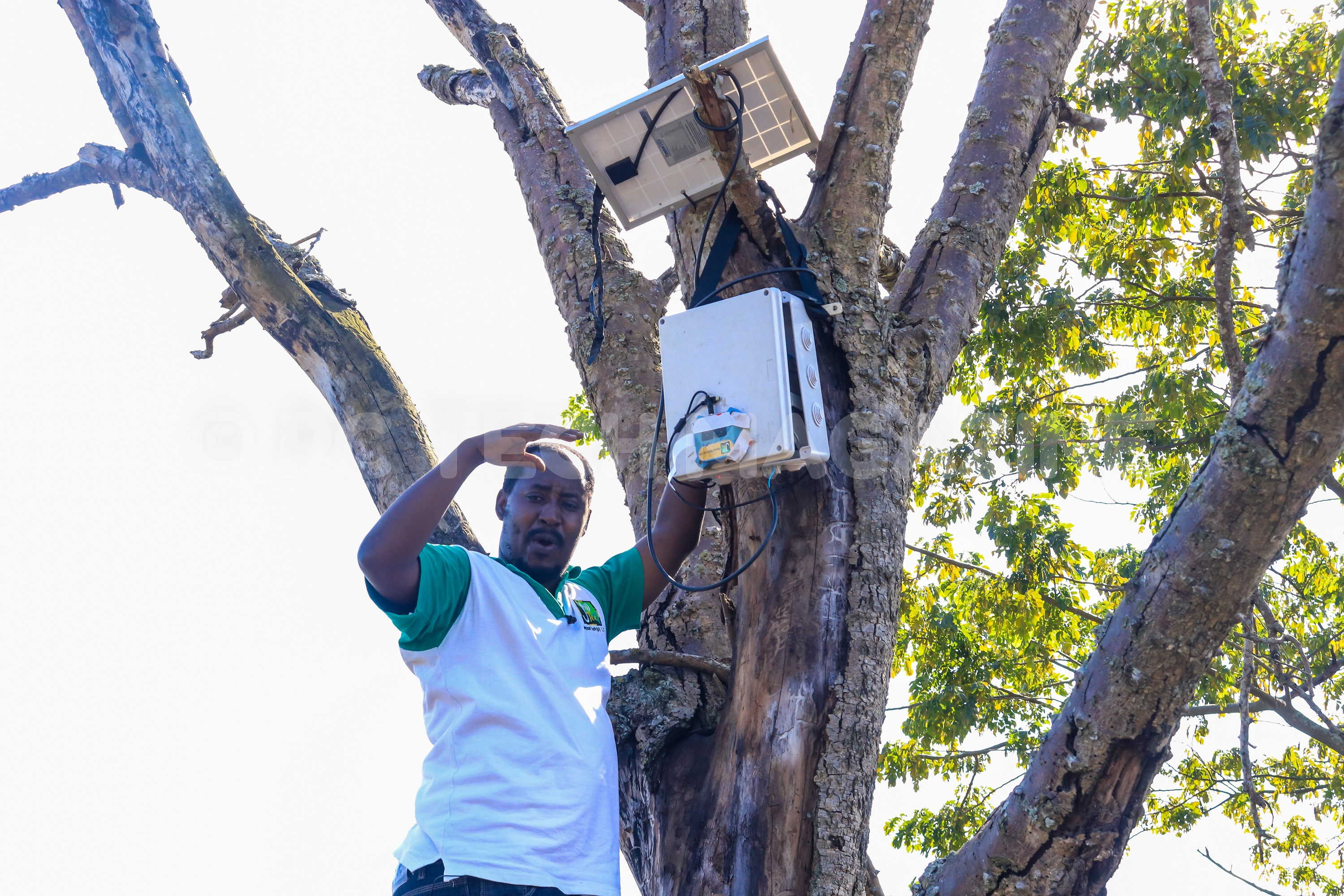 Photo of Jaguza Installs Own Tech in Mubende Farm