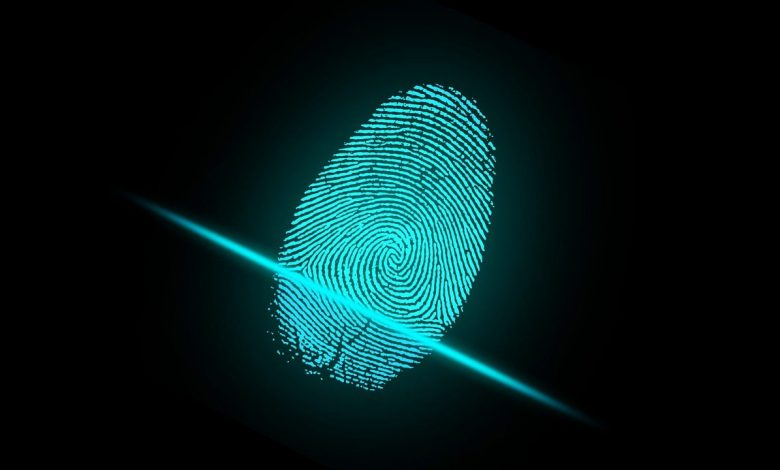 Biometrics are becoming more and more popular and sophisticated in the world of business too. (Image from Pixabay)